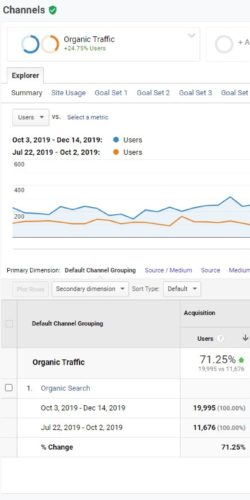 SEO Case Study # 1 - Organic Traffic Improvement After Site Structure Implementation